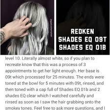 09p Shades Eq Chart Redken Hair Color Chart Shades Eq New Redken Shades Eq 9t