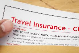 Mock Application Form Travel Insurance Claim Application Form And Human Hand On