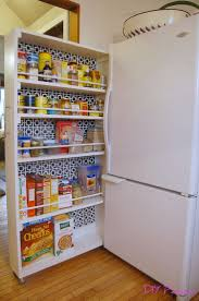 Diy Kitchen Pantry Cabinet 25 Best Ideas About Pantry Diy On Pinterest Kitchen Spice Rack