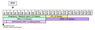 Fmla Cfra Pdl Chart Related Keywords Suggestions Fmla