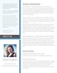 Advertising Resume Samples Cv Format For Freshers Students