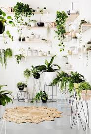 Pin by Ashley Durr on For the | HOME | Plant decor indoor, Houseplants  indoor, Plant decor