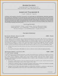 The Best Resume Ever Interesting Unique 48 Dual Citizenship On Resume Images