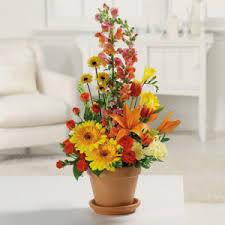 terra cotta treres in tulsa ok westside flowers gifts