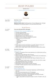 Example Of Cv Resume Magnificent Insurance Broker Resume Samples VisualCV Resume Samples Database