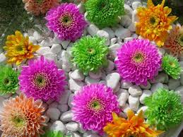 Small Picture Small Flower Garden Ideas Garden Ideas And Garden Designl best 25