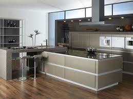 Design Kitchen Cabinets Online Gripping Buy Kitchen Cabinets Online Tags Kitchen Cabinets