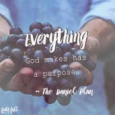 Love Your Body Quotes Inspiration What Does God Say About Your Body FaithGateway