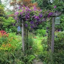 how to build an inexpensive garden arbor