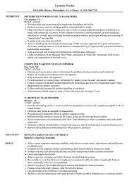 Team Skills Resume Warehouse Team Member Resume Samples Velvet Jobs
