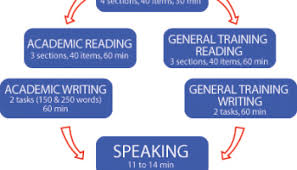 useful vocabulary for essay writing for band to private advice on how to pass your ielts exam
