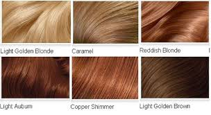 Copper Brown Hair Color Chart Copper Brown Hair Color Chart Find Your Perfect Hair Style