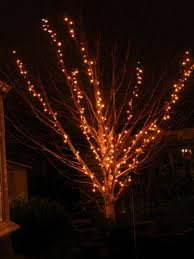 outside christmas lighting ideas. Outdoor Tree Lighting Ideas. Hanging Right Christmas Lights : Gorgeous Branches And Small For Outside Ideas D