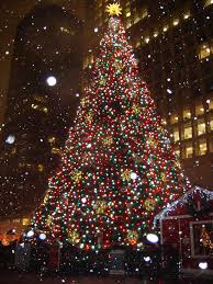 Daley Center Tree Lighting Daley Center Christmas Tree A Christmas Tree Just Always L