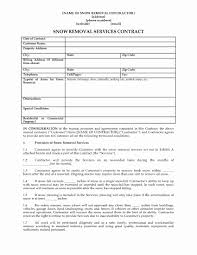 Snow Removal Contract Template Lovely Dd Form Beautiful Christmas ...