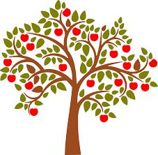 How Do You Bear Fruit In Your Christian Life U2013 Kyle McDonaldTree Bearing Fruit