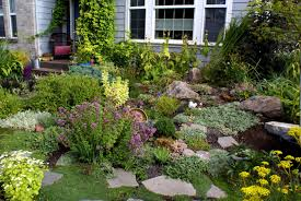 If your rocks have flat surfaces they may be able to be used as stepping  stones