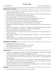 Peoplesoft Hrms Functional Consultant Resume