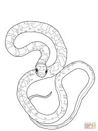 Small Picture Coloring Pages Black Racer Snake Coloring Page Free Printable