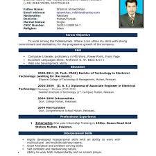 Resume In English Download Cv Format Download English Free Cv The