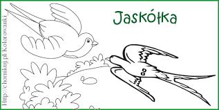 24 kolorowanki jaskółka.rar - jaskółki - # kolorowanki - wiosna -  Marzena_koter22 - Chomikuj.pl