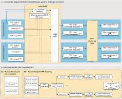 Flowchart Of The Batched Multi Image Spectral Histology