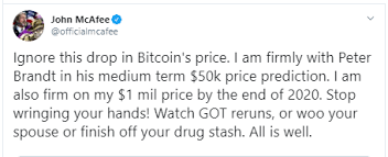 John Mcafee Undisturbed By Btc Price Drop Supports Peter