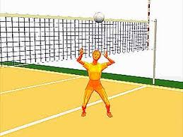 tips for crafting your best volleyball essay ideas history of volleyball essay he also borrowed ideas from a few different sports such as tennis handball baseball and badminton to make volleyball