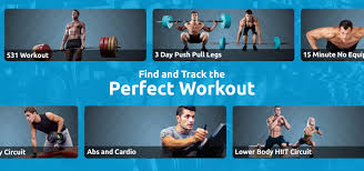Biggest Loser Step Workout Chart Planet Fitness Planet Fitness Full Body Routine Jefit Best Android And