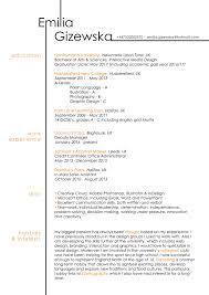 Ux Designer Resume Examples Ux Designer Resume Example Emilia Gizewska Ui Ux Visual Graphic 13