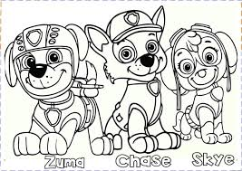 Die hauptfiguren sind rettungs welpen und ihr anführer ryder. Coloring Pages Paw Patrol Collection Whitesbelfast Com
