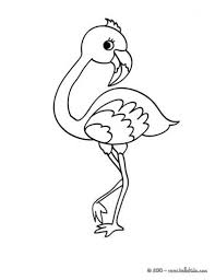 pictures of flamingos to color. Delighful Color Cute Baby Flamingo Coloring Page For Kids With Pictures Of Flamingos To Color O