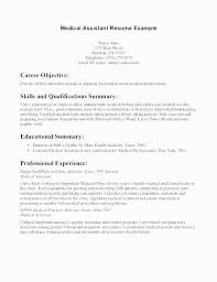 Professional Summary On A Resume Examples New Sample Resume Entry