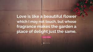 Helen Keller Quote Love Is Like A Beautiful Flower Which I May Not