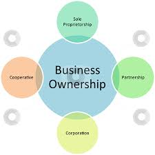 Business Ownership Types Business Ownership Management Diagram Stock Photo