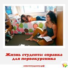 Жизнь студента справка для первокурсника Студенческая жизнь справка для первокурсника