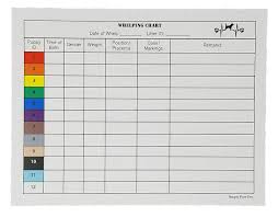 Whelping Chart Two Arrows Puppy Whelping Charts For Record Keeping Bundled With Whelping Collars Great For Breeders Works Great For Recording And Tracking Data