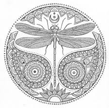 Small Picture Collection Dragonfly Coloring Pages Pictures Images coloring kids
