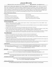 Software Engineer Resume Template Unique Sample Resume Software