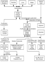 Organic Acid And Solvent Production Springerlink