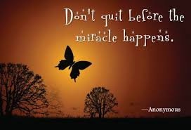 Butterfly Quotes Fascinating Awesomely Inspiring Butterfly Quotes For A Great Day Ahead Nature