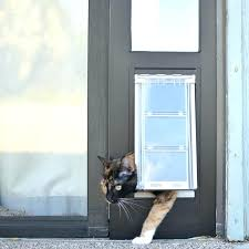 diy cat door cat door for door panel e cat door for sliding glass doors cat