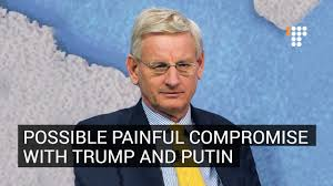 「Carl Bildt says about russia 」の画像検索結果