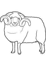 Dessins Colorier Coloriage Mouton Imprimer