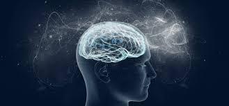 Resultado de imagem para imagens cérebro e mente