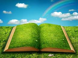grass and sky backgrounds. Beautiful Blue Sky Grass Spellbook And Backgrounds P