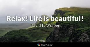 Life Is Beautiful Quotes Fascinating Life Is Beautiful Quotes BrainyQuote