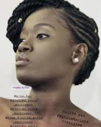 Tresse Afro Américaine Ce Nouveau Look De Coiffure Très