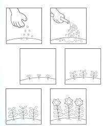Life Cycle Of A Plant Worksheet | Homeschooldressage.com