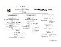 2013 2014 Organizational Chart Mcneese State University
